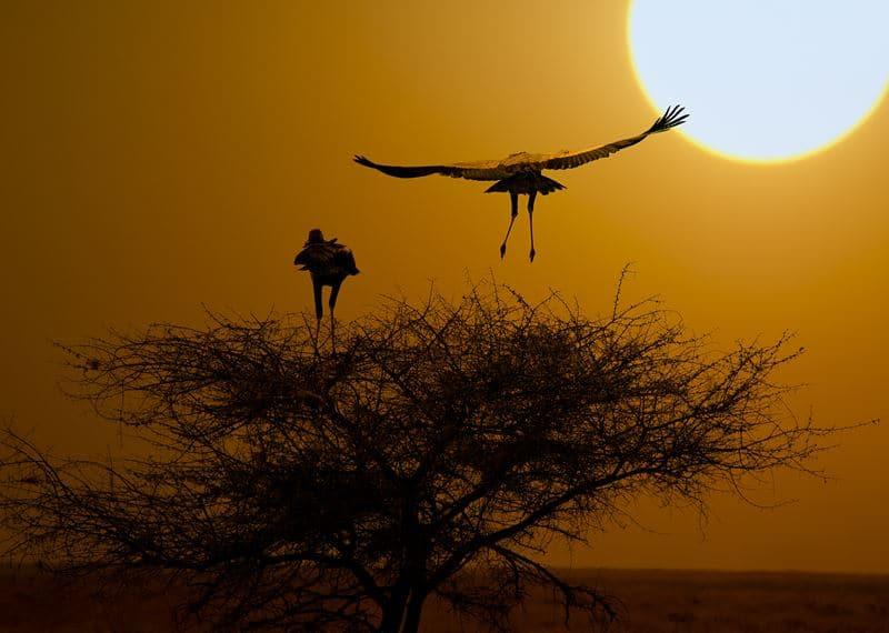 Landschaft in Namibia für Rundreisen