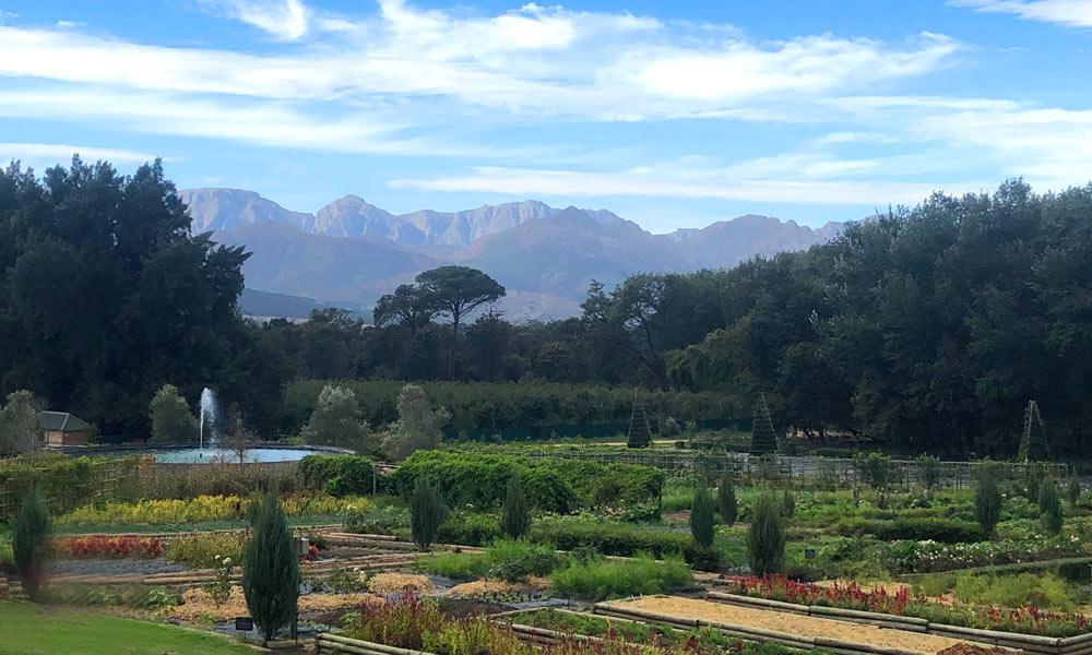 Delheim Weltklasse Weine aus Stellenbosch