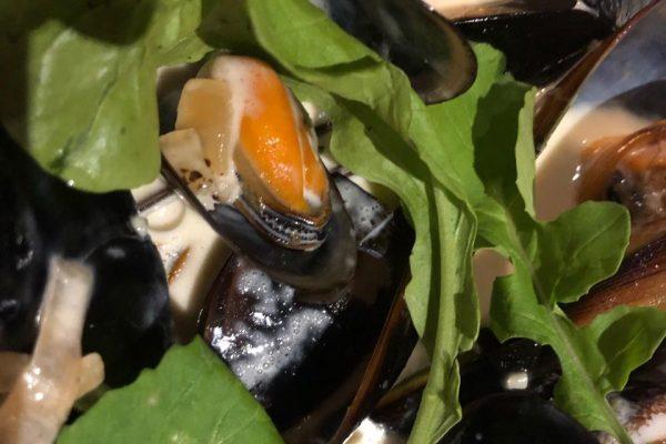 Miesmuscheln in Sahnesoße mit Ruccola Salat