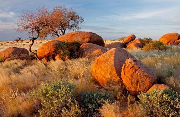 etosha-nationalpark-sued