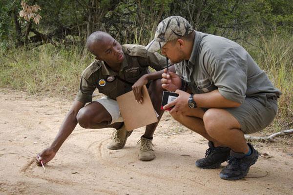 Ein Ranger erklärt die Spurensuche im Krüger Nationalpark